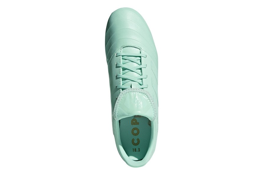 Schuhe adidas Copa 18.3 FG DB2462